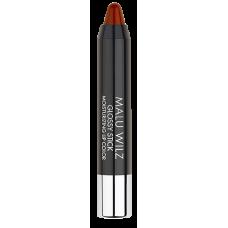 Gloss Hidratant Glossy Stick Moisturizing Lip Color MALU WILZ 3 gr nr. 7
